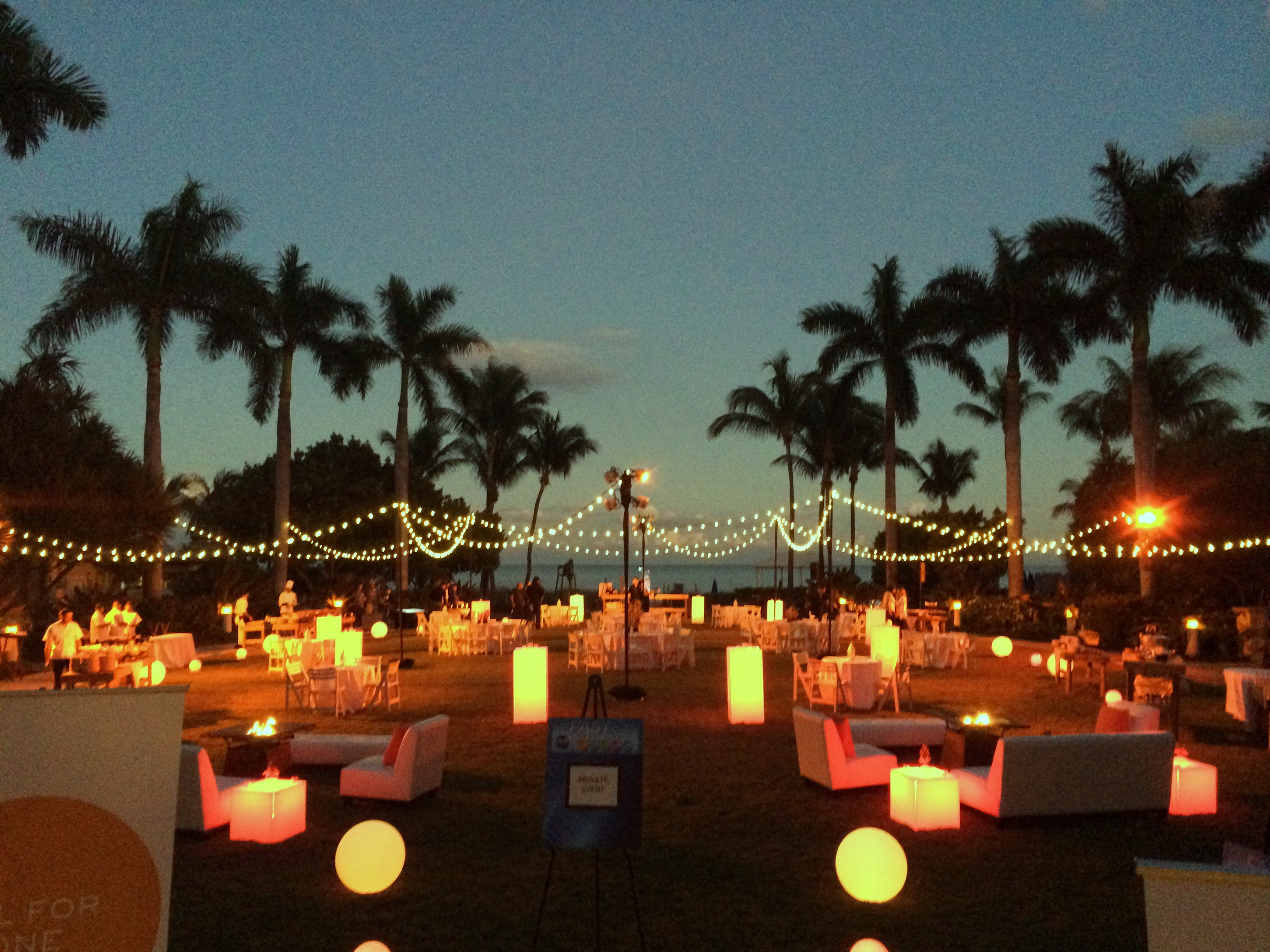 How To String Lights On A Palm Tree : Ambient and Perimeter Lighting - Advantage Destination and Meeting Services