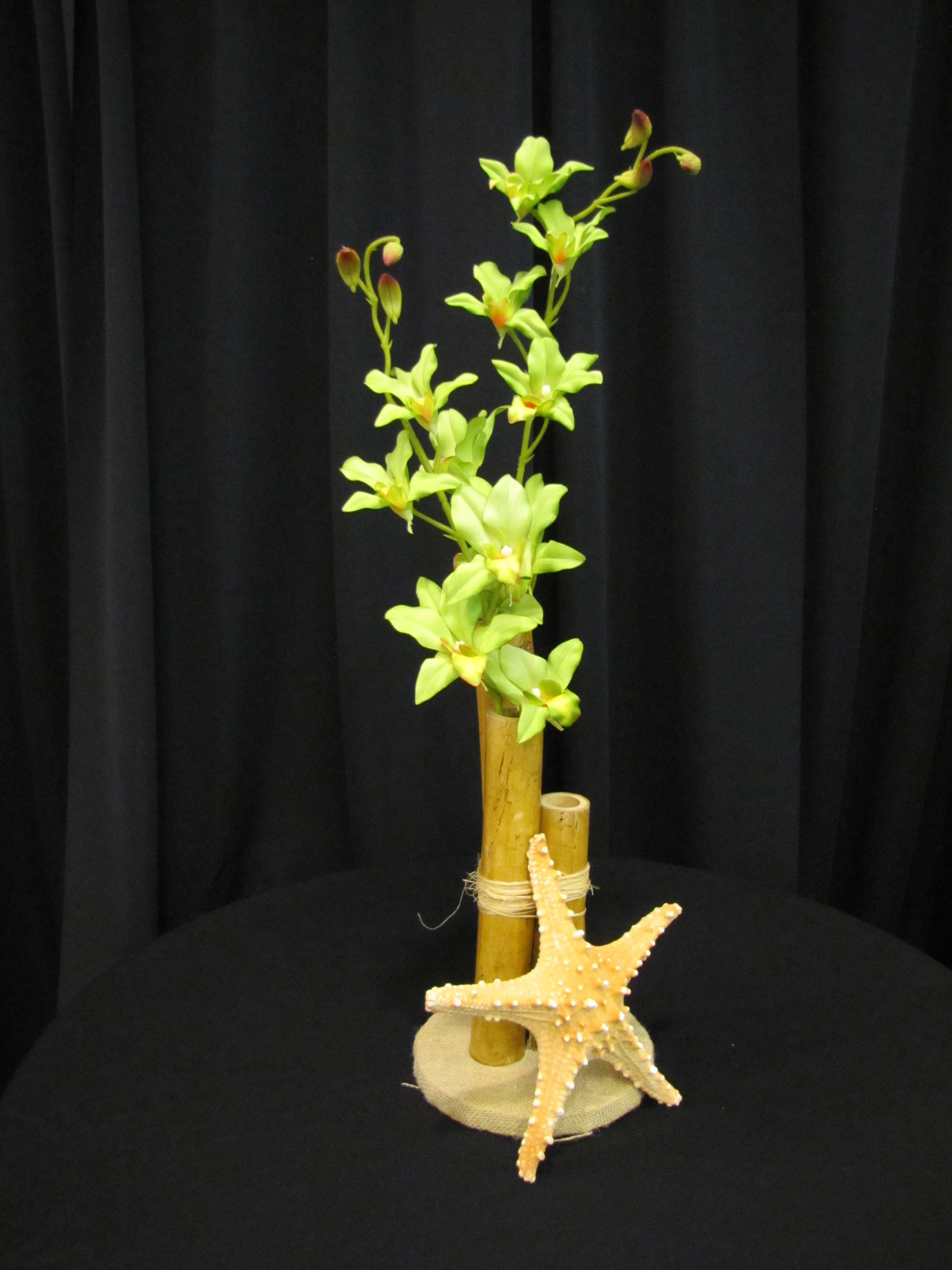 Bamboo With Orchid And Starfish