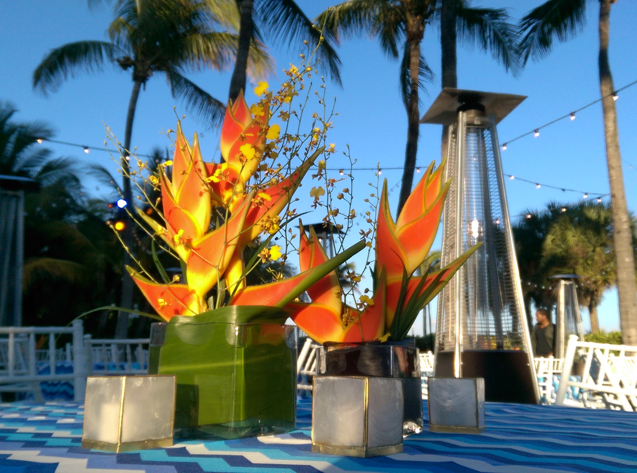 Tropical Duo Orange Heliconia And